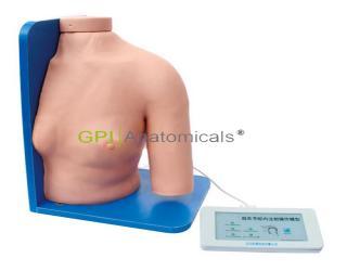 GPI/1014A肩关节腔内注射操作模型