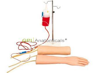 GPI/HS42手部、肘部组合式静脉输液(血)训练模型