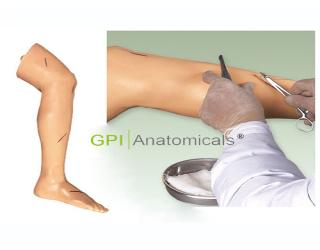 GPI/LV2高级外科缝合下肢模型