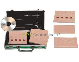 GPI/LV5多功能小手术训练工具箱