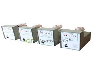 MM-3脉象模型(4台/套)