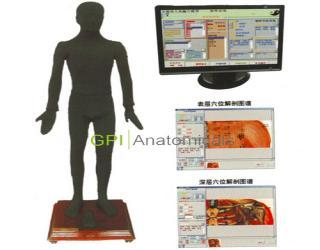 四川GPI/MAW-170A多媒体按摩点穴电子人体模型