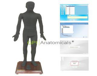 四川GPI/MAW170B多媒体人体点穴仪考试系统