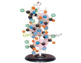 GPI/A40055蛋白质演示模型