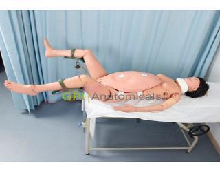 GPI/1010高级分娩与急救技能训练模型
