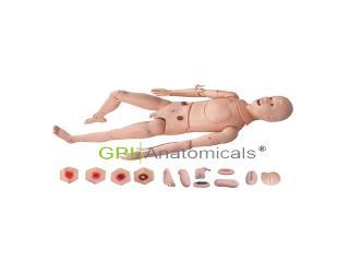 GPI/2800痔疮、压疮护理模拟人