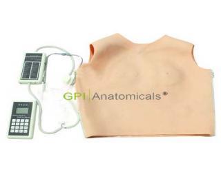 GPI/1062心肺听诊触诊外套模型