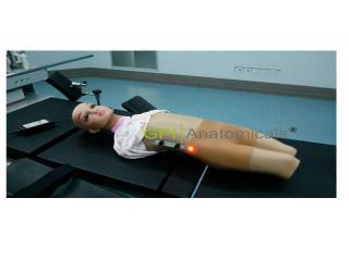 GPI/CY-XEDJM-2高级电动小儿颈部及股部动脉静脉穿刺训练模型