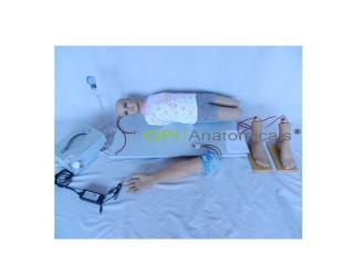 GPI/DM、XL---1高级电动脉搏式动脉穿刺技术训练系列模型