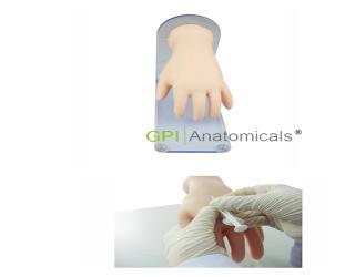GPI/A6007高级手背静脉注射模型