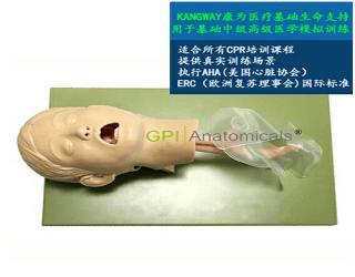 GPI/J16高级儿童气管插管模型