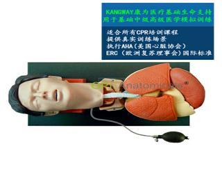 GPI/X1050高级气管插管训练仿真模型