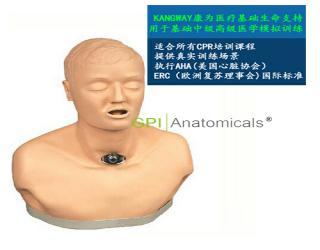 GPI/H23高级气管切开护理训练模型