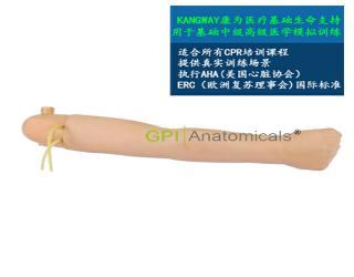 GPI/1001可更换的血压手臂模型(与心肺复苏模型配套使用)