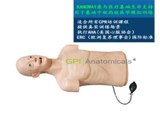 GPI/CPRJ159高级心肺复苏和气管插管半身训练模型——老年版