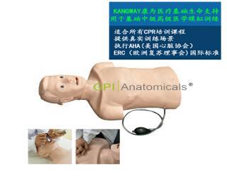 GPI/CPRJ158-A高级心肺复苏带气管插管半身模型-青年版简易型