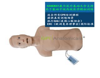GPI/CPRJ158-C高级心肺复苏带气管插管半身模型-青年版带CPR控制器