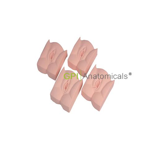 GPI/1033高级会阴缝合模块(四种切口)