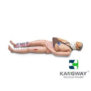 闭合式四肢骨折固定模型