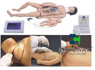 高级分娩与母子急救模型